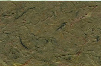 Mulberry Rough Paper Spring Green