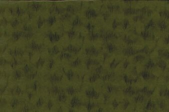 Riviere Paper Olive
