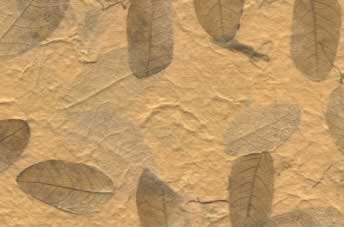 Raintree Leaves w Corn Hair Paper Yellow Ochre