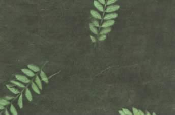 Lokta Sun Washed Fern Paper Palm Green & Forest