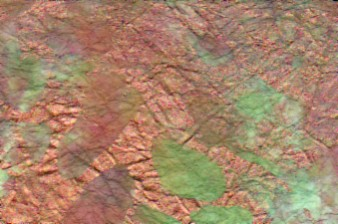 Marble Metallic Copper Paper Tropical