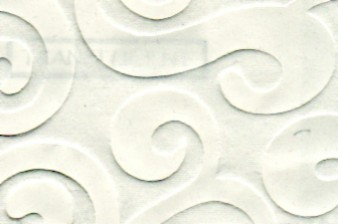 Embossed Allegro Paper White
