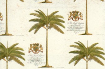 Rossi Print Paper Palm Trees