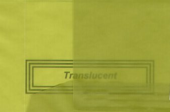 Vellum Envelope Lime Green A-7